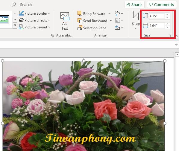 Hướng dẫn cách chèn hình ảnh trong 1 ô Excel